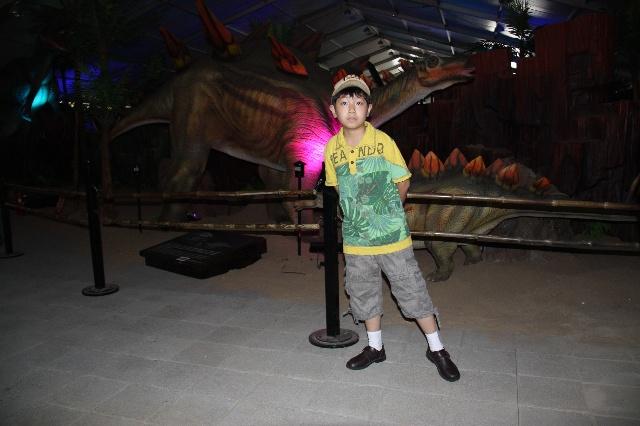 """听说7月1日鸟巢附近主办了""""探梦恐龙岛""""主题乐园,周六领多多去游玩了"""